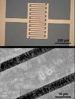 Interdigitated electrode
